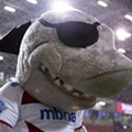Finlay Sharky
