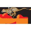 Free State Cheetahs